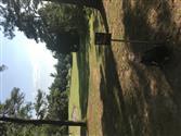 Spring Creek Park DGC