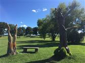 50 Acre Park