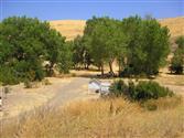 Hellyer Park (Coyote Creek DGC)