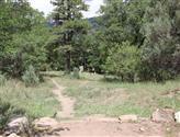 Colorado Timberline Academy DGC