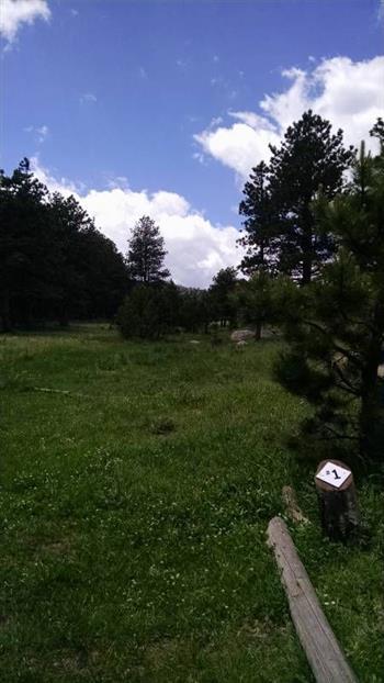 Sundance Trail Ranch image