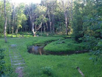 Stoney Creek DGC image