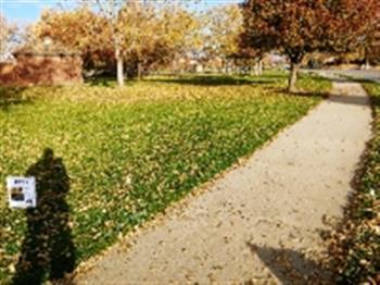 Barnes Park image